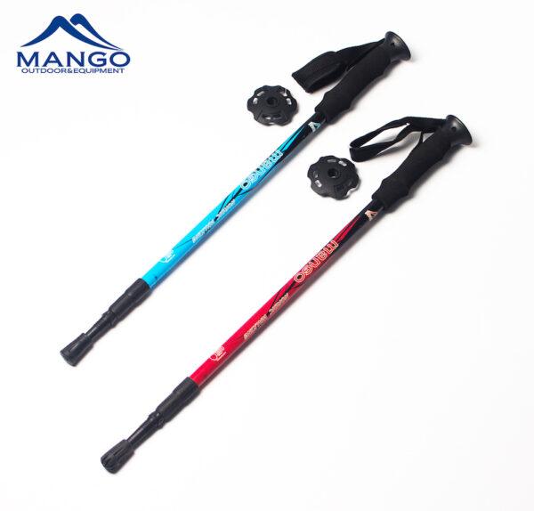 hiking stick pair