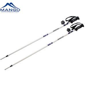 lightweight ski pole