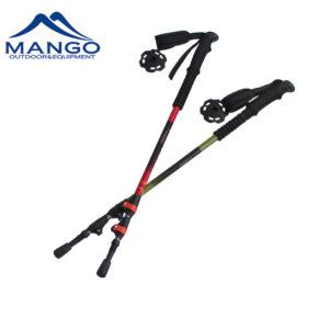 quick lock system walking pole