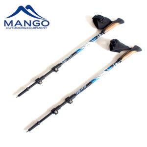 Carbon Nordic walking stick set