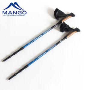 hiking stick set